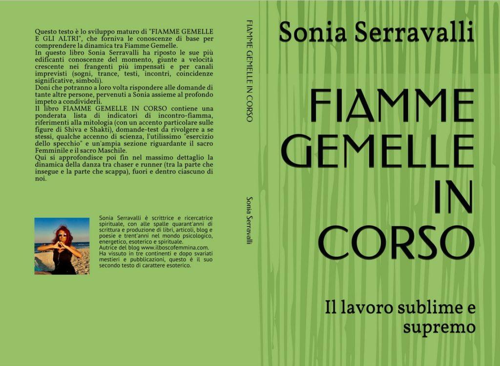 Copertina Fiamme Gemelle In Corso di Sonia Serravalli